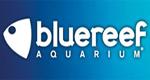 bluereef